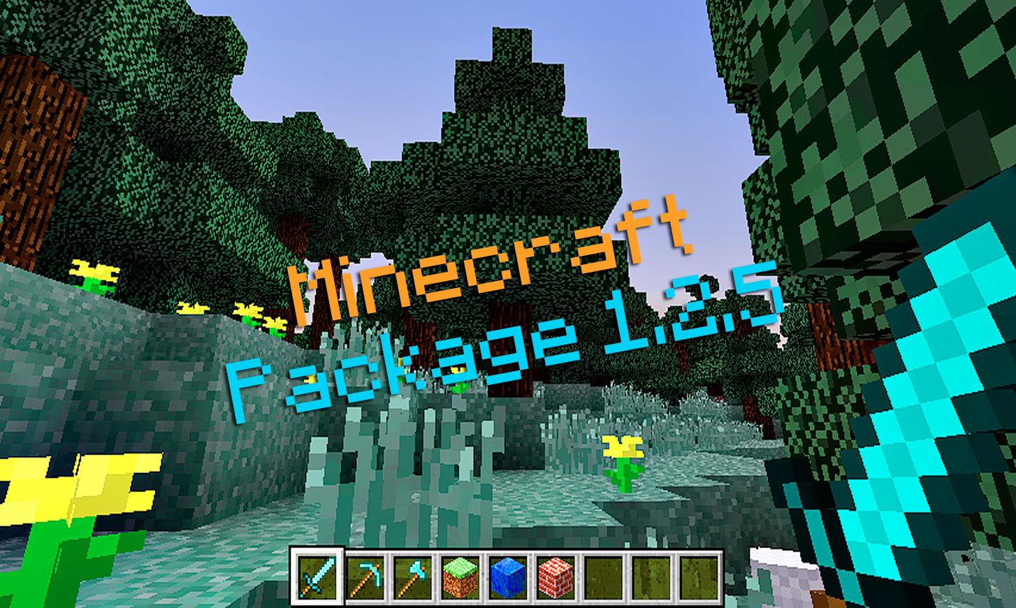 Package client/serveur Minecraft 1.2.5